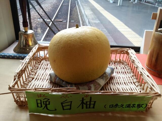 熊本名物の晩白柚